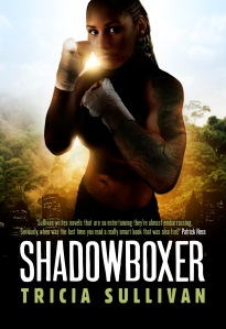 shadowboxer mockup rgb